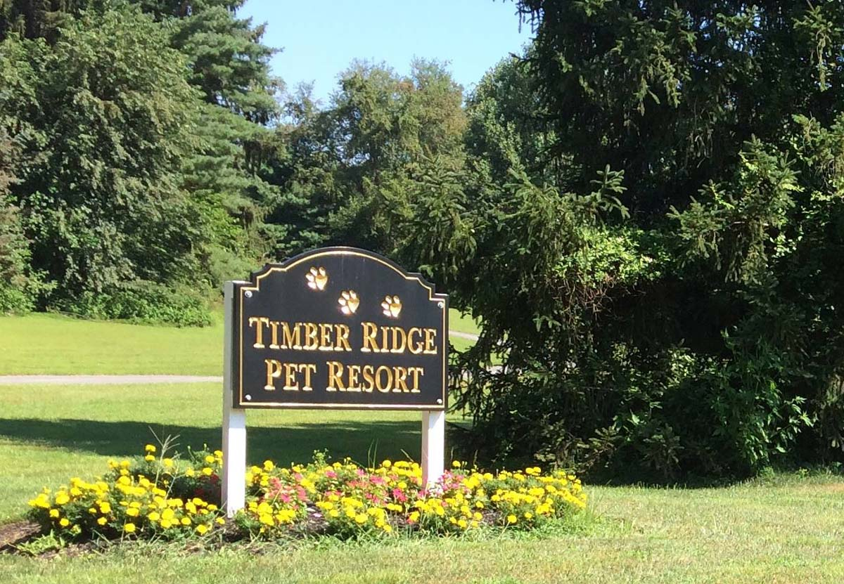 Timber Ridge Pet Resort Signage